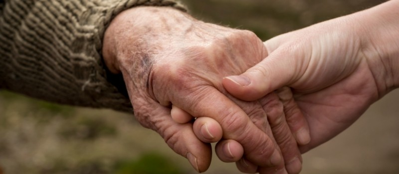 agencies for elderly home care